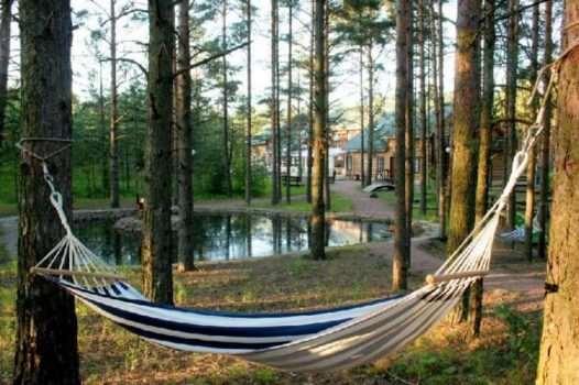 Отдых загородом – замечательная возможность отдохнуть от шумного города