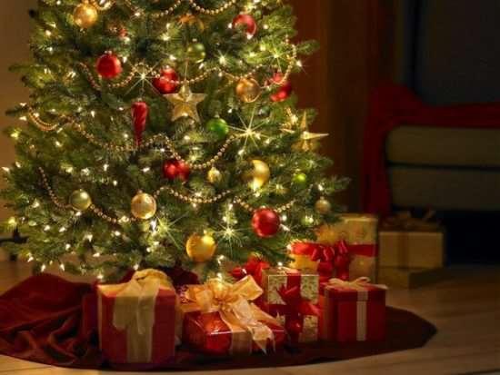 Новогодняя елка - какая лучше?