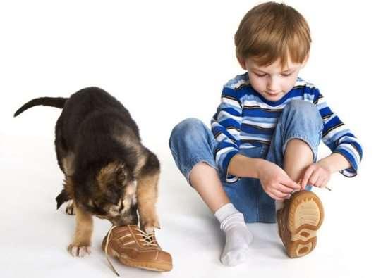 Качественная детская обувь: как не ошибиться с выбором?