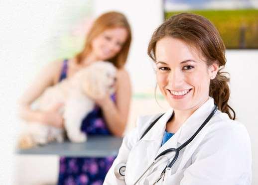 Как часто нужно посещать ветеринарную клинику?