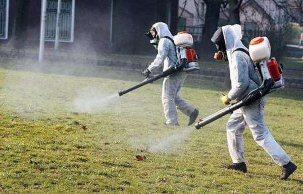 Эффективная обработка дачного участка от комаров и клещей
